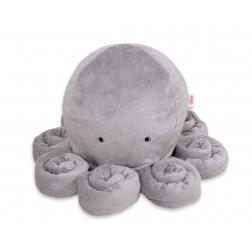 Chobotnice velká - šedá