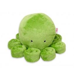 Chobotnice velká - zelená